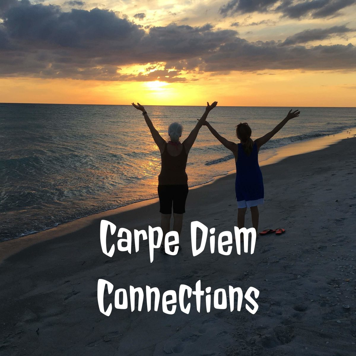 Hannah Kane talks about Goal Setting on Carpe Diem Connection Podcast
